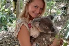 koala_